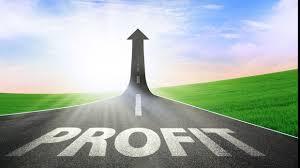 Profit reinvestit